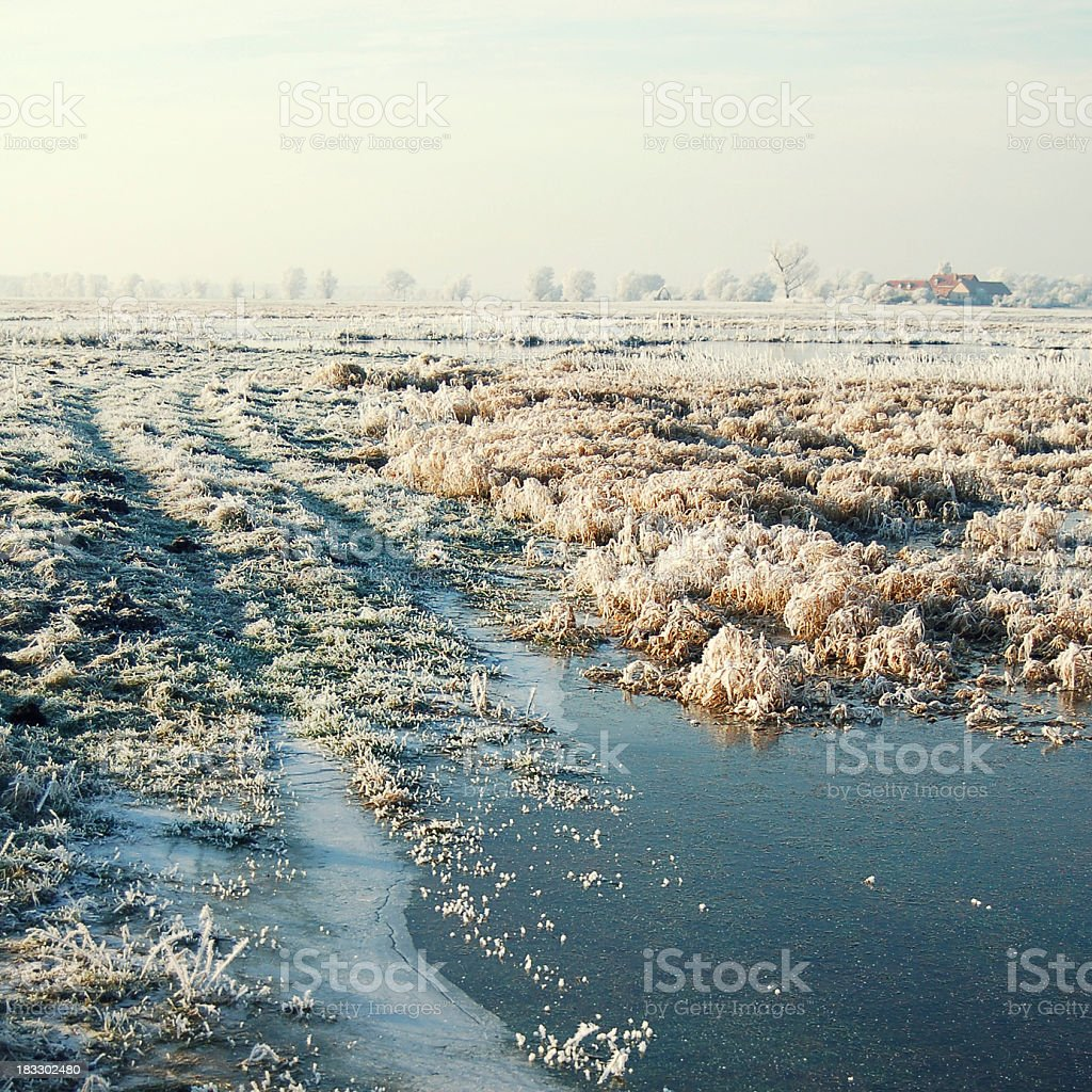 cross-processed image of snowy meadow at havel river (Germany) stock photo
