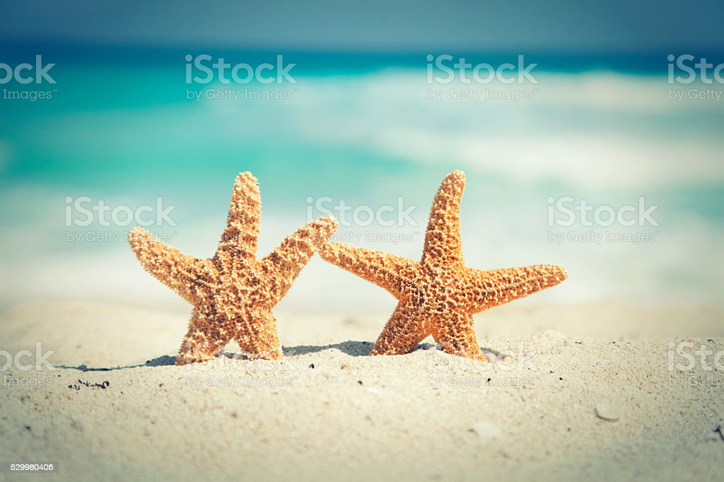 Cross-processed starfish on the beach with ocean waves in background stock photo