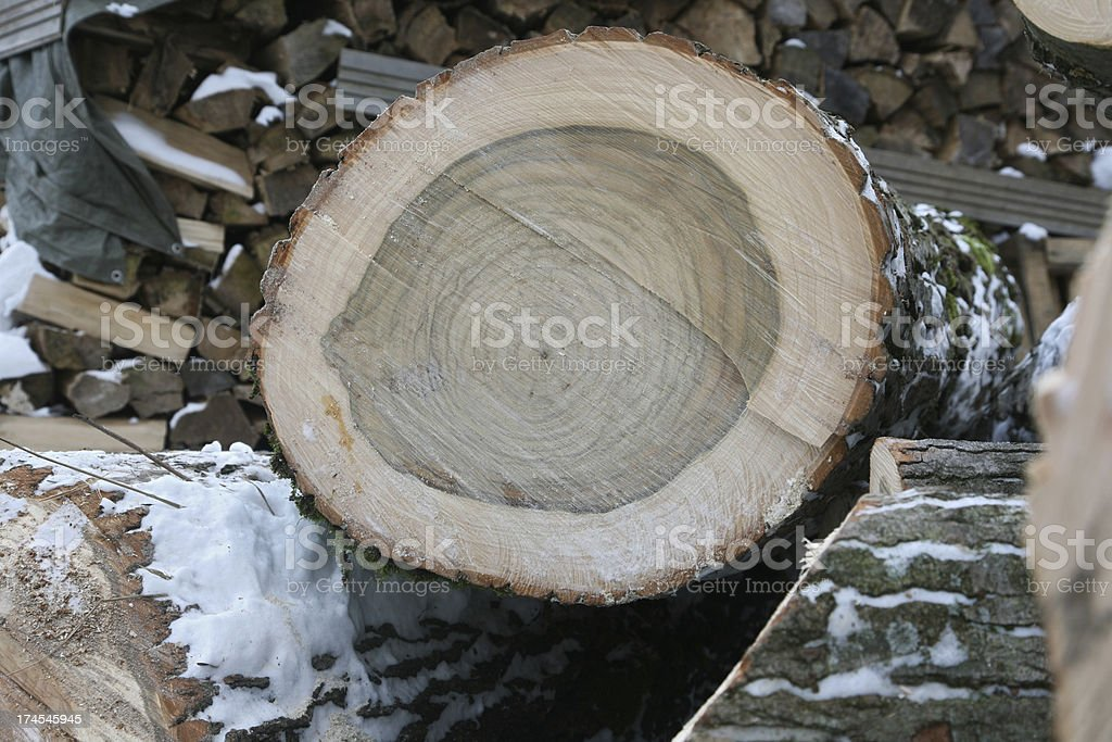 cross-section royalty-free stock photo
