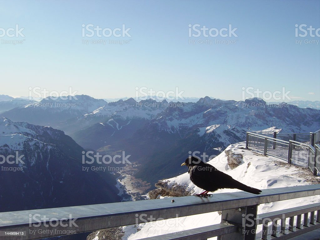 Crow and the mountain royalty-free stock photo