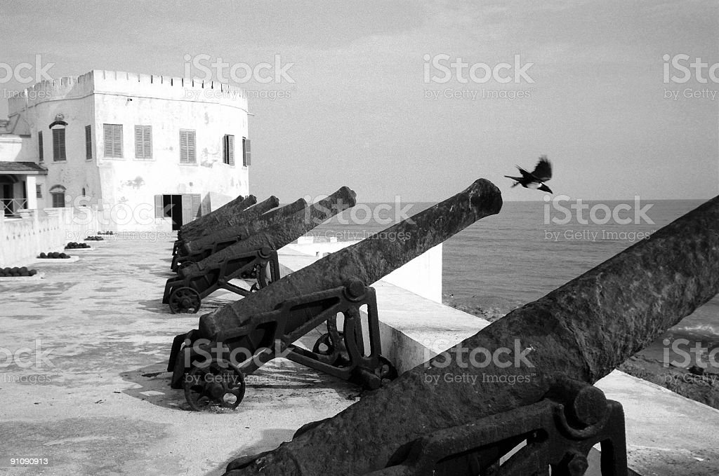 Crow Flies out of Slave Fort Canon royalty-free stock photo