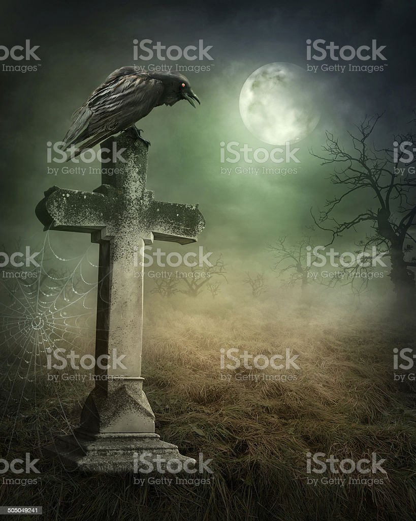 Crow on a grave stock photo