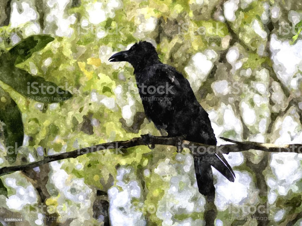Crow on the tree. stock photo
