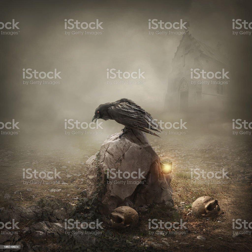 Crow sitting on a gravestone stock photo
