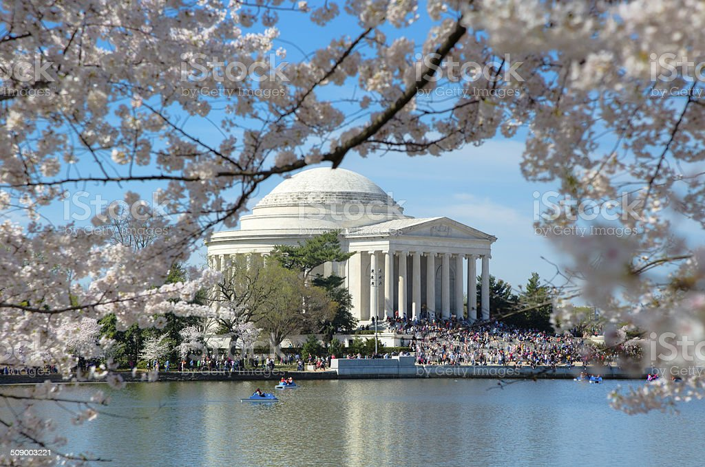 Crowds Gathered at Jefferson Memorial for Cherry Blossom Festival stock photo