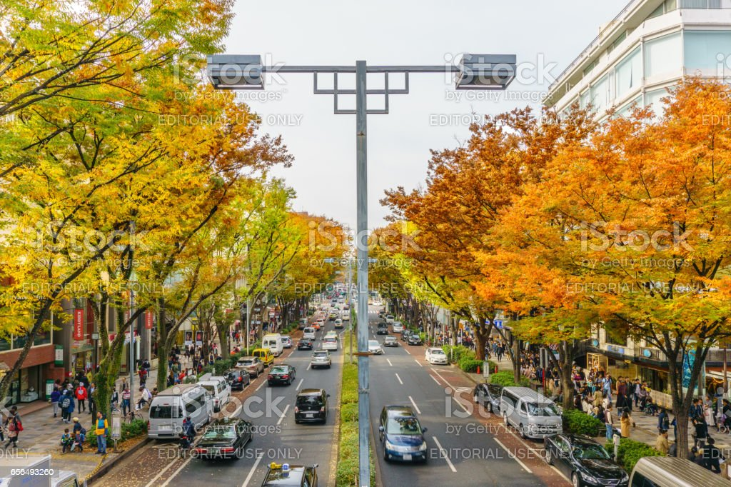 Tokyo, Japan - November 20, 2016 : Crowds walk through a Omote Sando Road. Omote-sando is considered one of most important shopping areas in Tokyo, the largest city in the world. stock photo