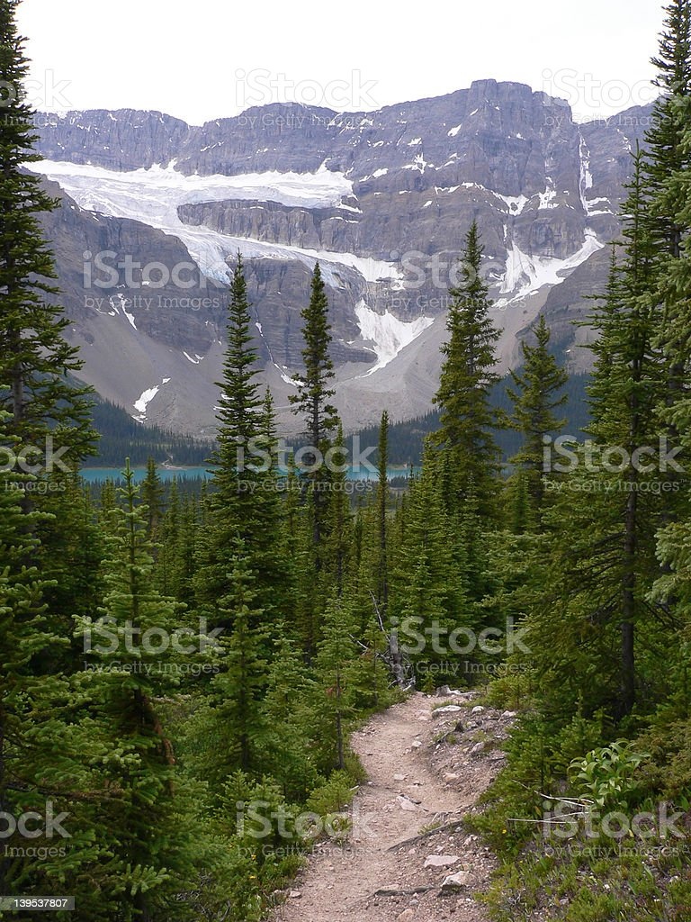 Crowfoot Glacier and Trail stock photo