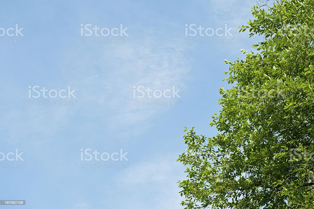 Crown and sky royalty-free stock photo