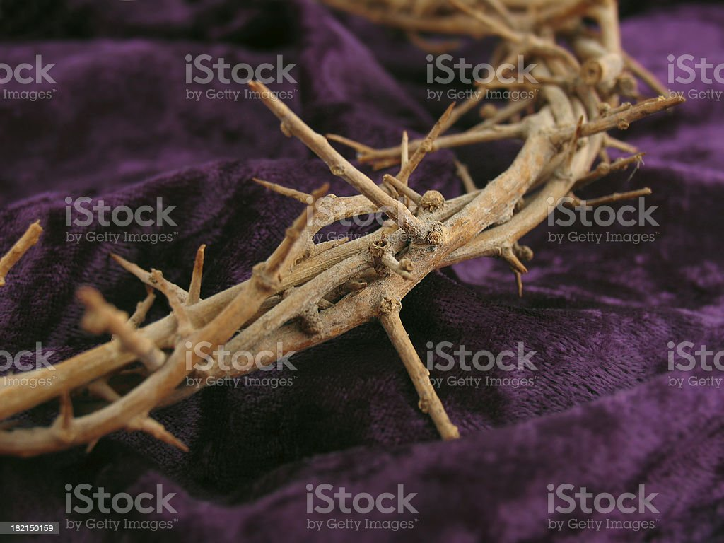 Crown of Thorns & Purple Robe Macro royalty-free stock photo