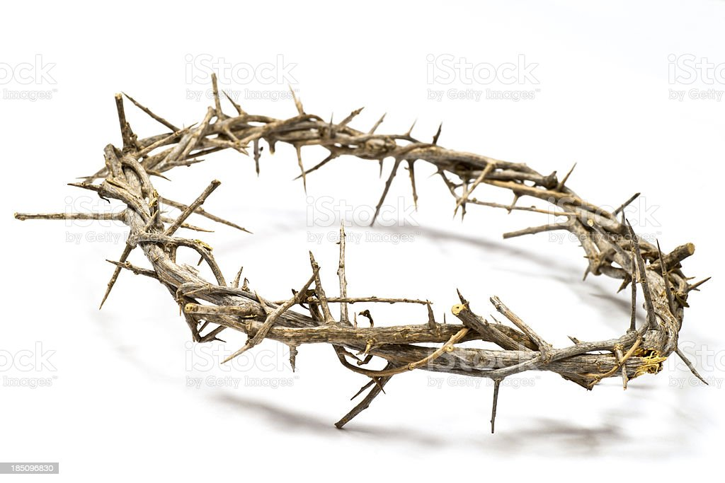 Crown of Thorns on a light background stock photo