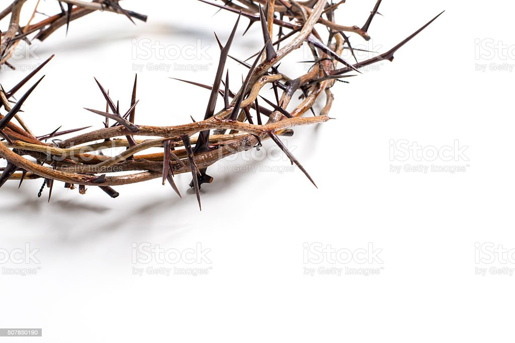 Crown of thorns on a white background - Easter. religion. stock photo