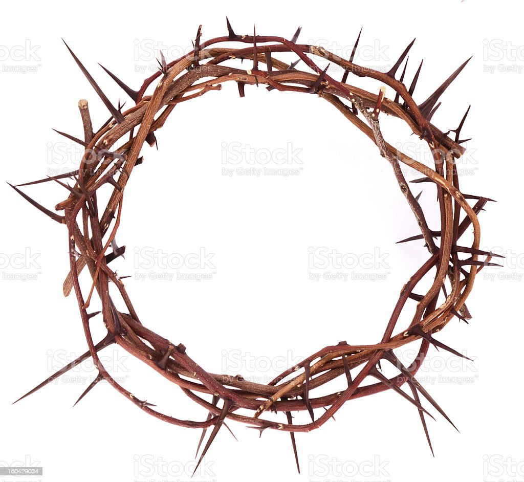 A crown of thorns on a white background stock photo