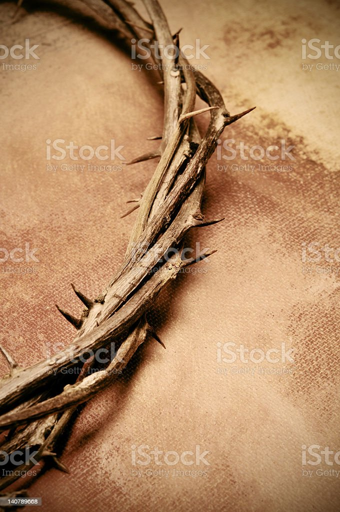 Crown of thorns on a wood surface royalty-free stock photo