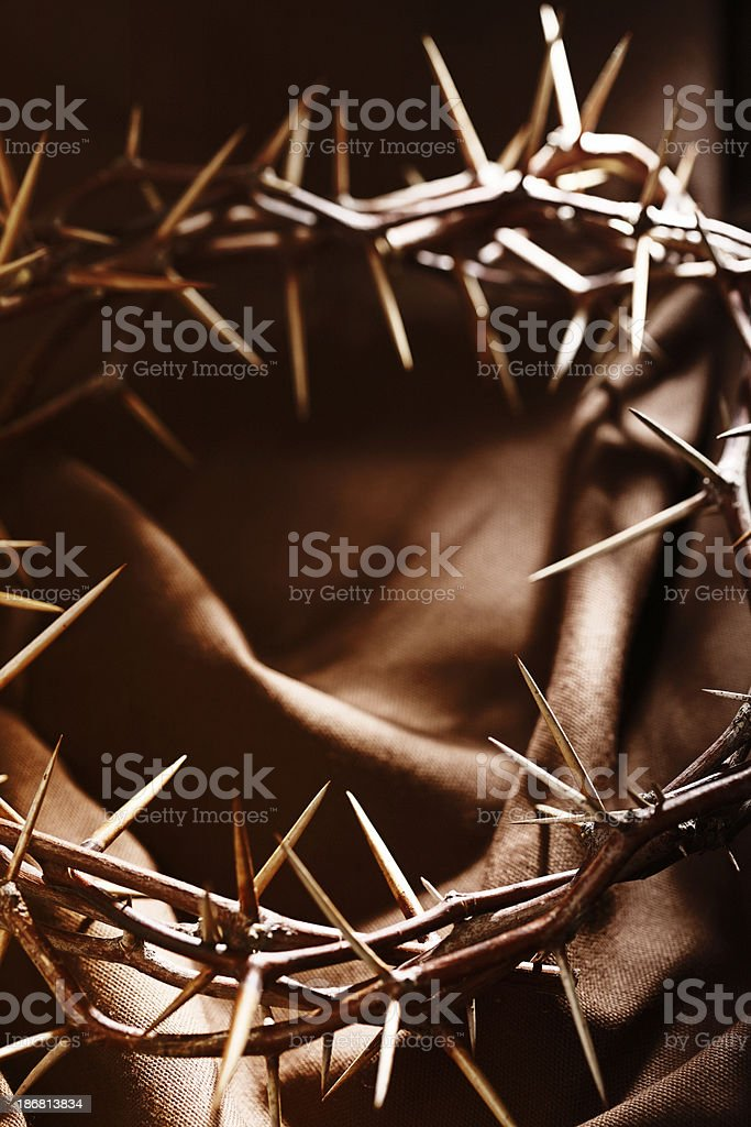 Crown of Thorns on Brown Background royalty-free stock photo