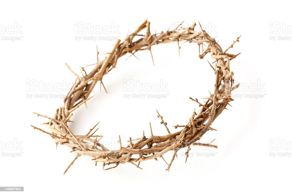 Crown of Thorns on White Background royalty-free stock photo
