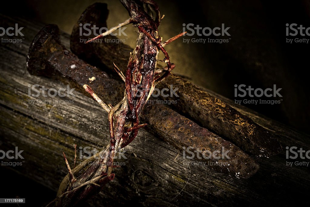 Crown of Thorns royalty-free stock photo