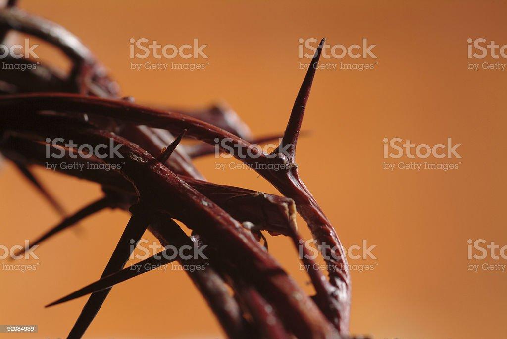Терновый венец - Стоковые фото Стоковая фотография