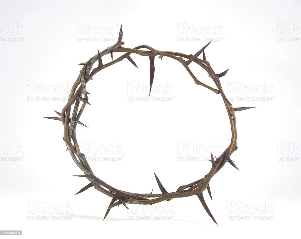 Crown of Thorns. royalty-free stock photo