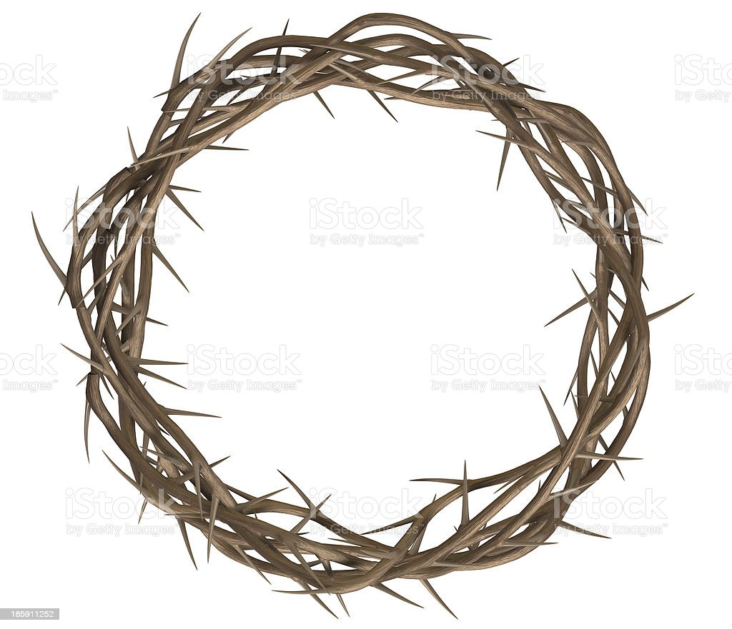 Crown Of Thorns Top stock photo