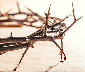 Crown of thorns with blood dripping.