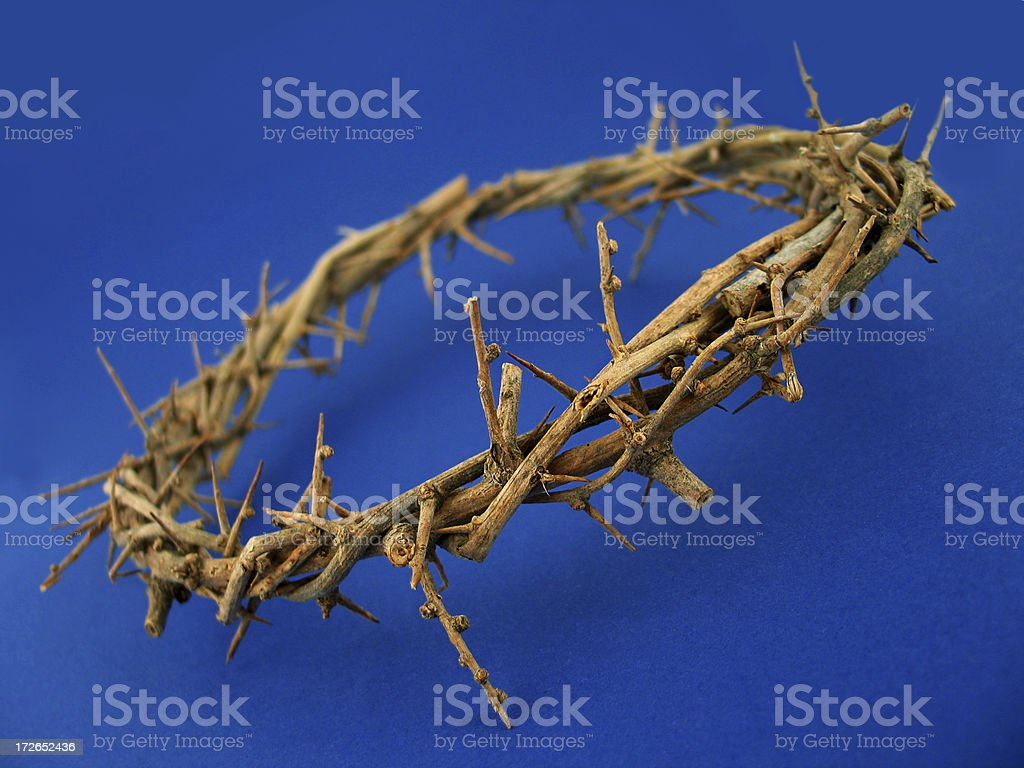 Crown of Thorns-Blue royalty-free stock photo
