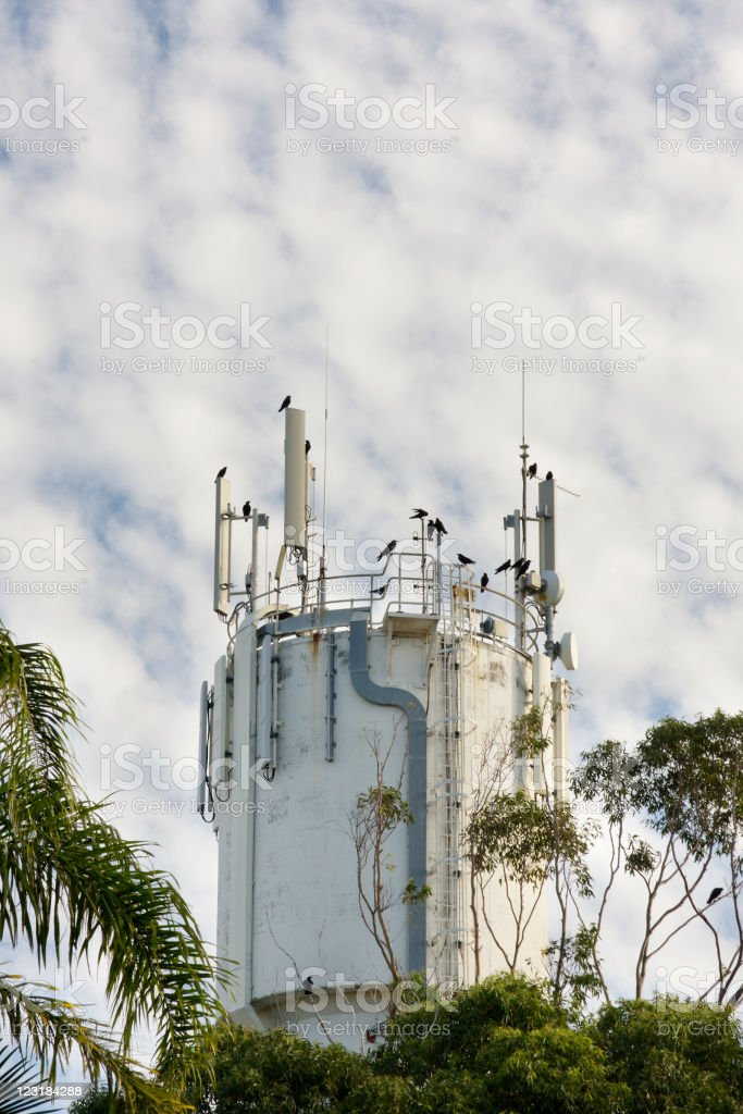 Crows on Water Tower royalty-free stock photo