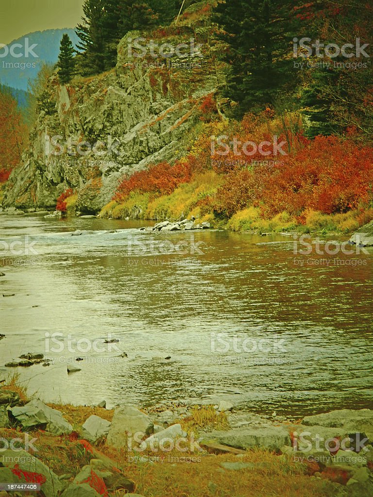 Crowsnest River Autumn Colors royalty-free stock photo