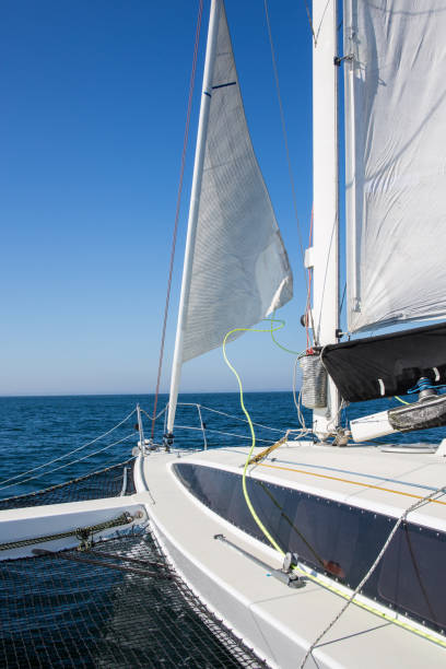 Trimaran Pictures, Images and Stock Photos - iStock