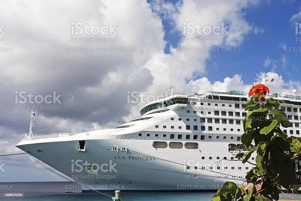 Cruise ship # 6 XL stock photo