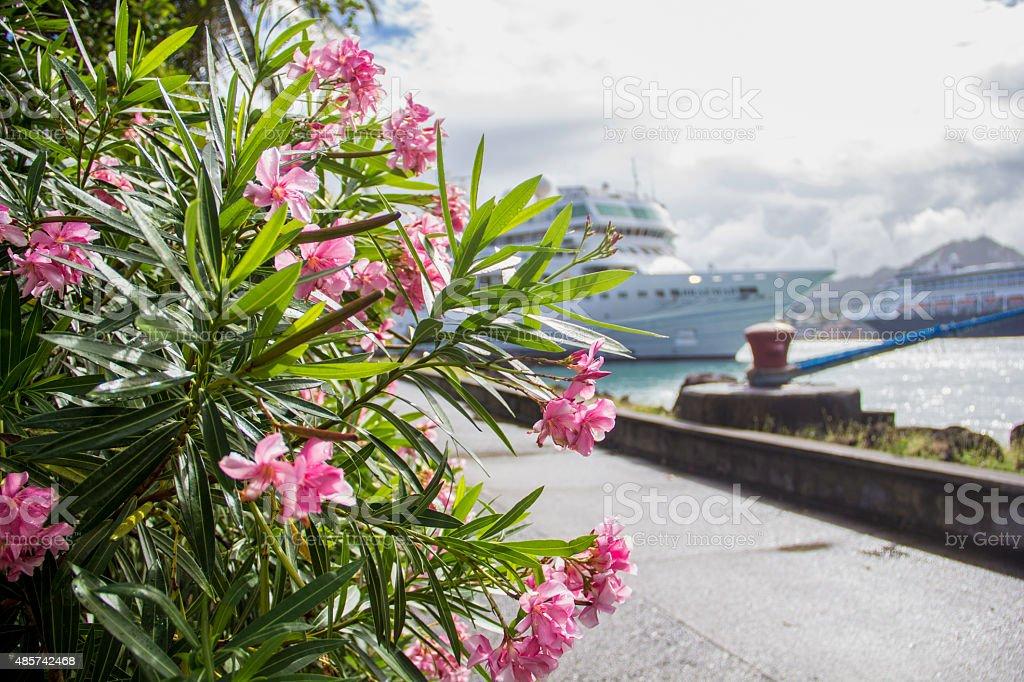 Cruising Caribbean stock photo