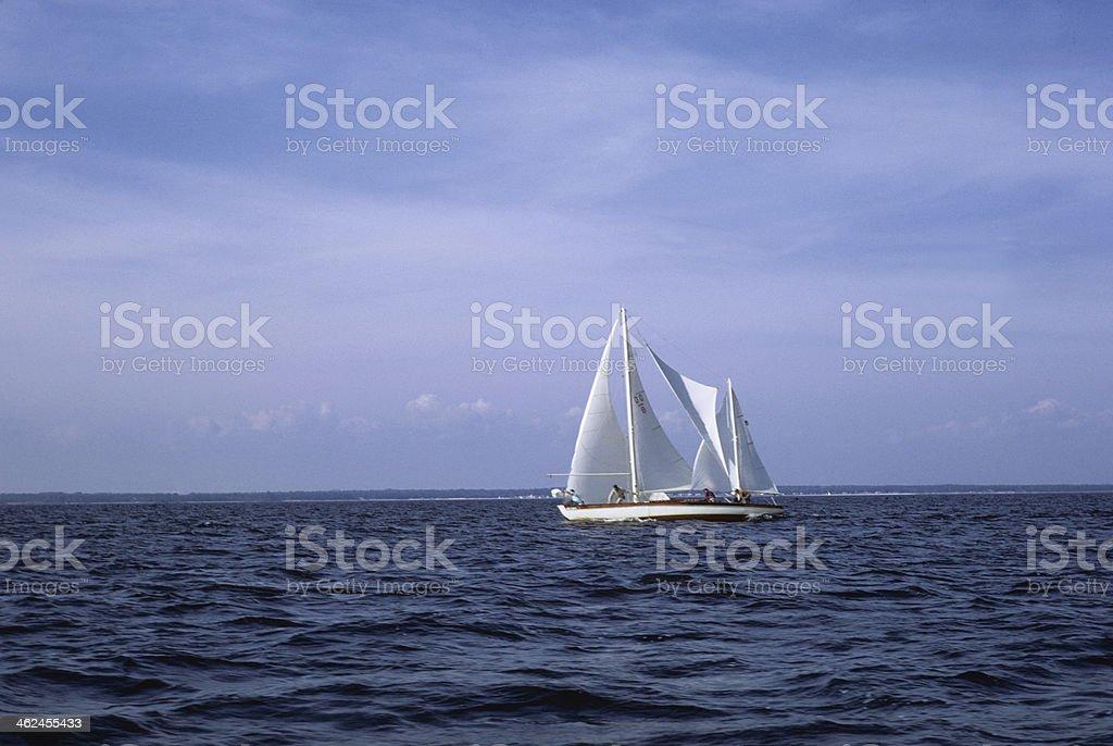 Cruising Off Coast stock photo