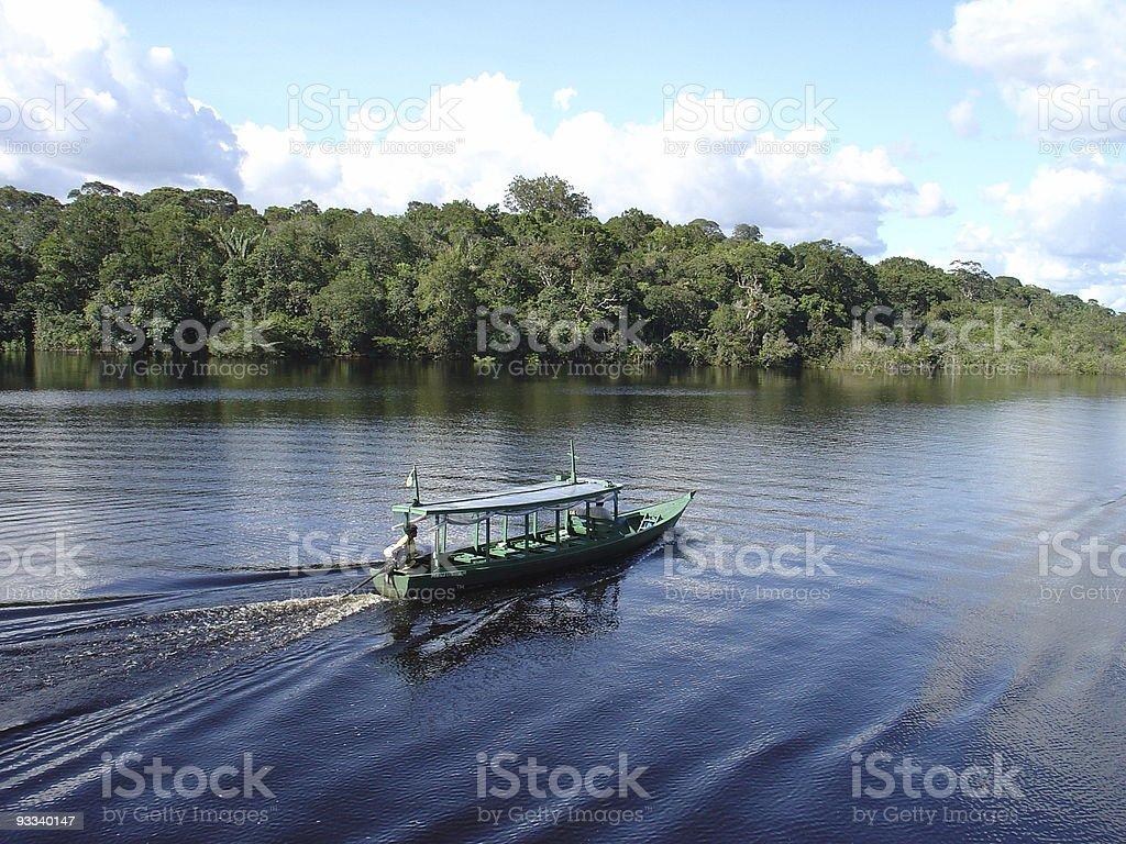 Cruising the Amazon stock photo