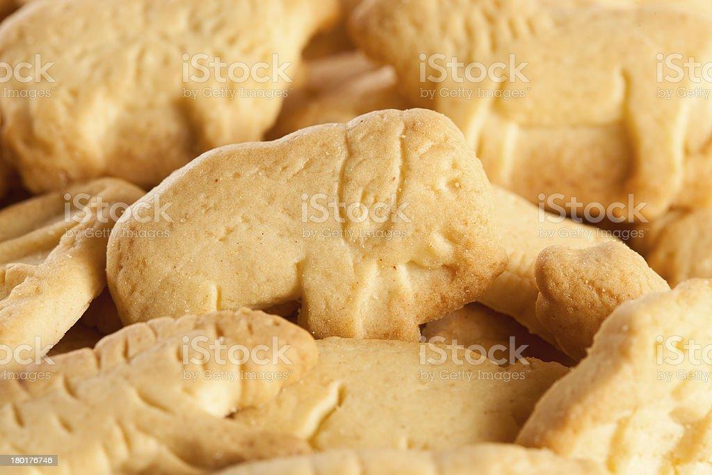 Crunchy Lemon Animal Cracker Cookies royalty-free stock photo