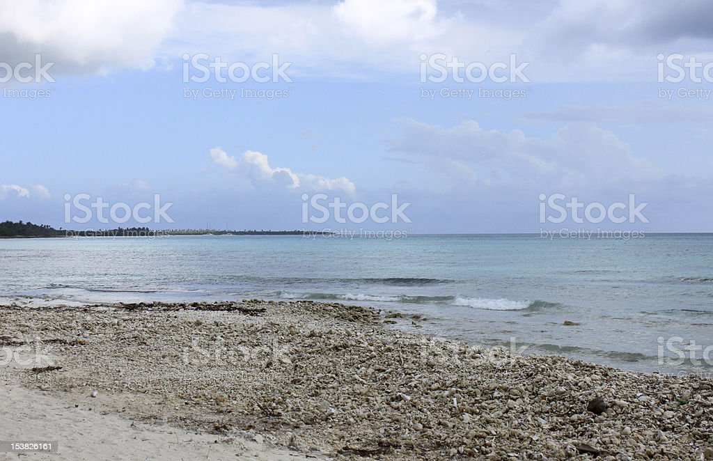 crushed coral and shells at the island shore royalty-free stock photo