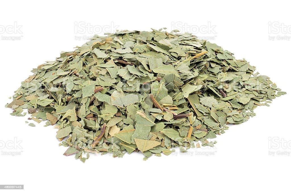 crushed eucalyptus leaves stock photo
