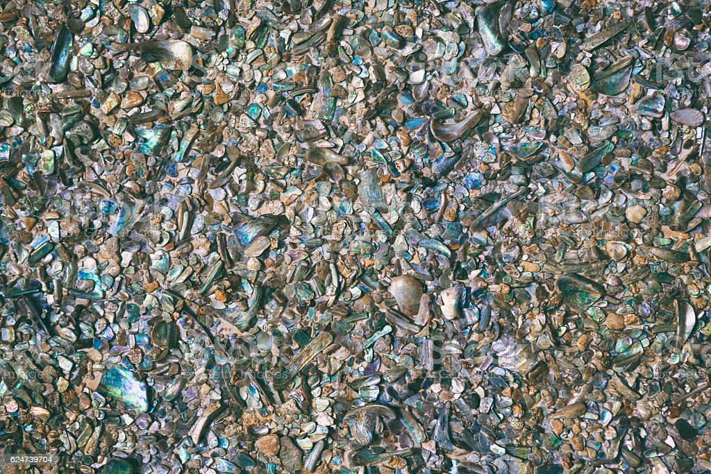Crushed Pāua Shell background stock photo