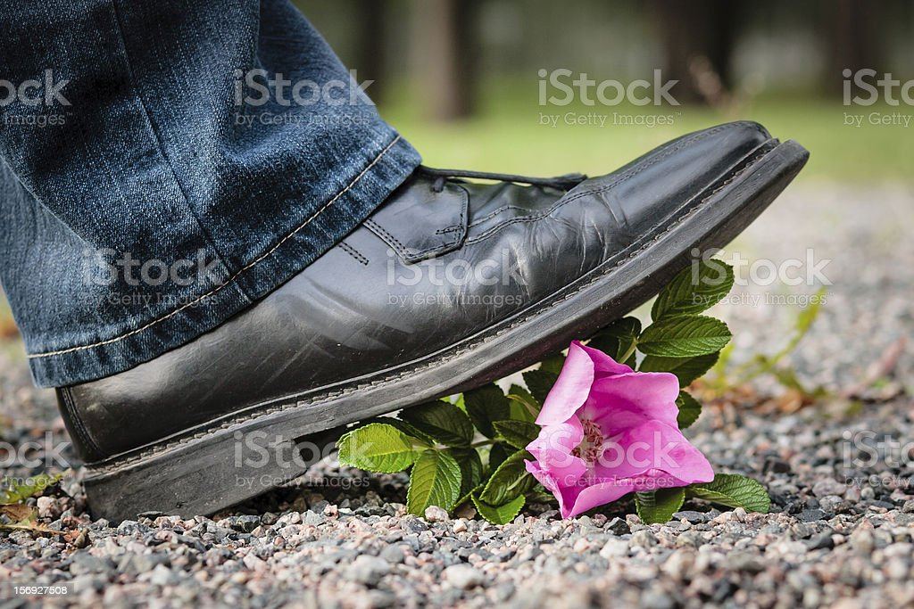 Crushing the Flower stock photo