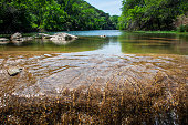 Crystal Clear Running Water Greenbelt Austin Texas Summertime Fun