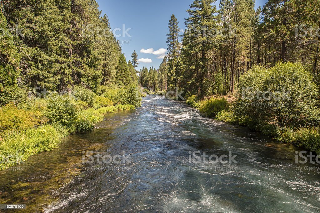Crystal-clear mountain stream flowing through a forest stock photo