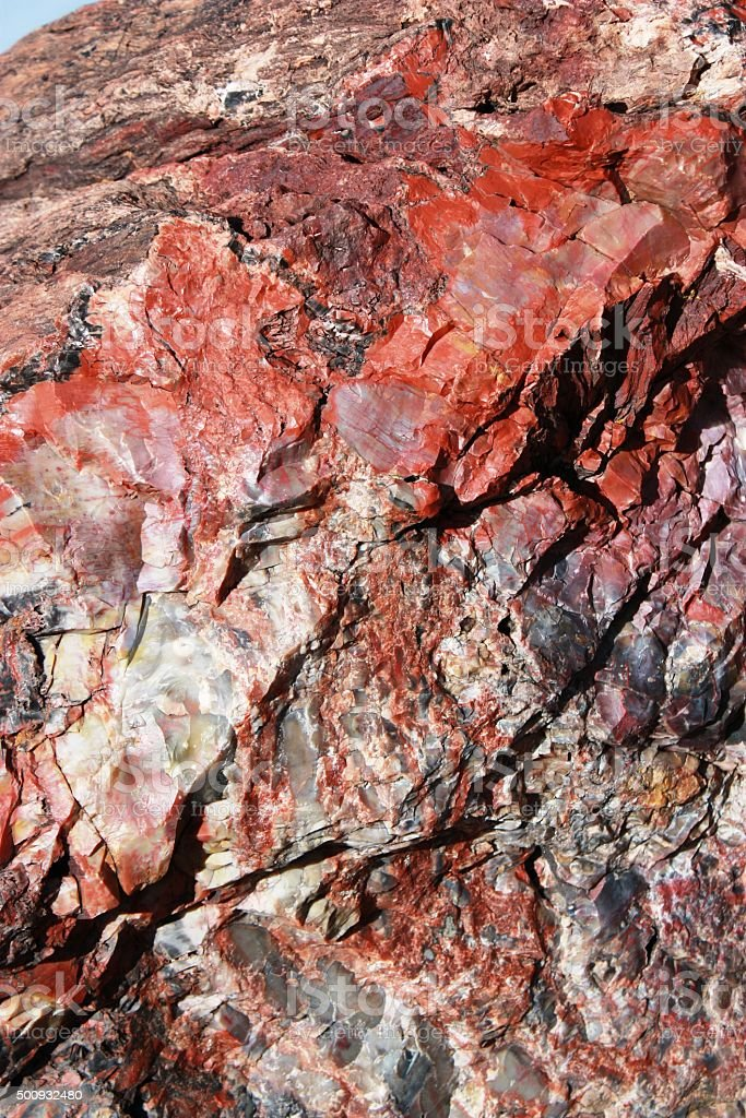 Crystals in petrified wood in Petrified Forest National Park, USA stock photo