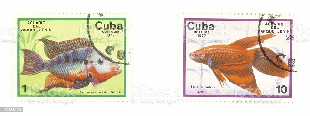 Cuba stamps with fish stock photo