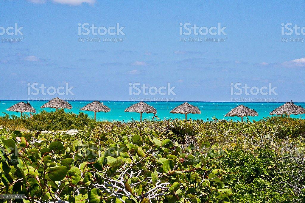 Cuban Beach stock photo