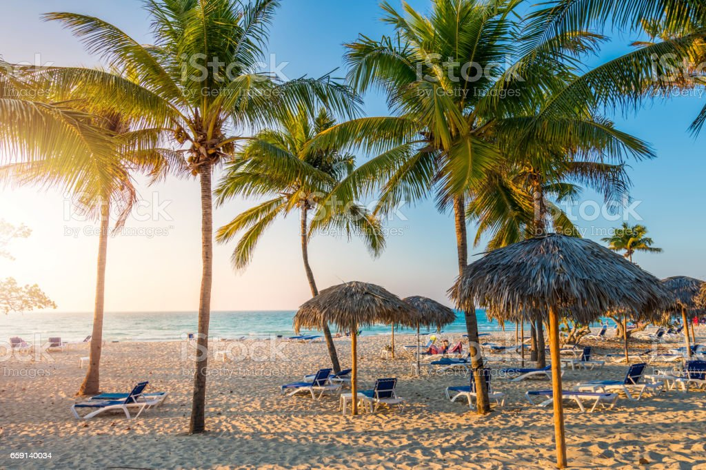 Cuban beach with sun lounger and palms stock photo