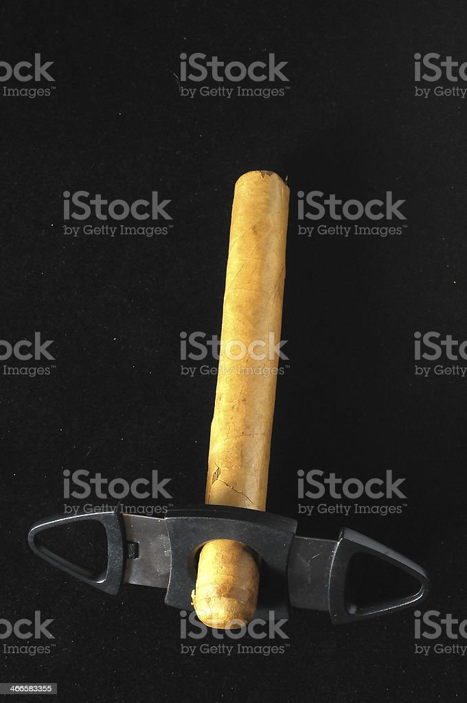 Cuban Brown Havan Cigar stock photo