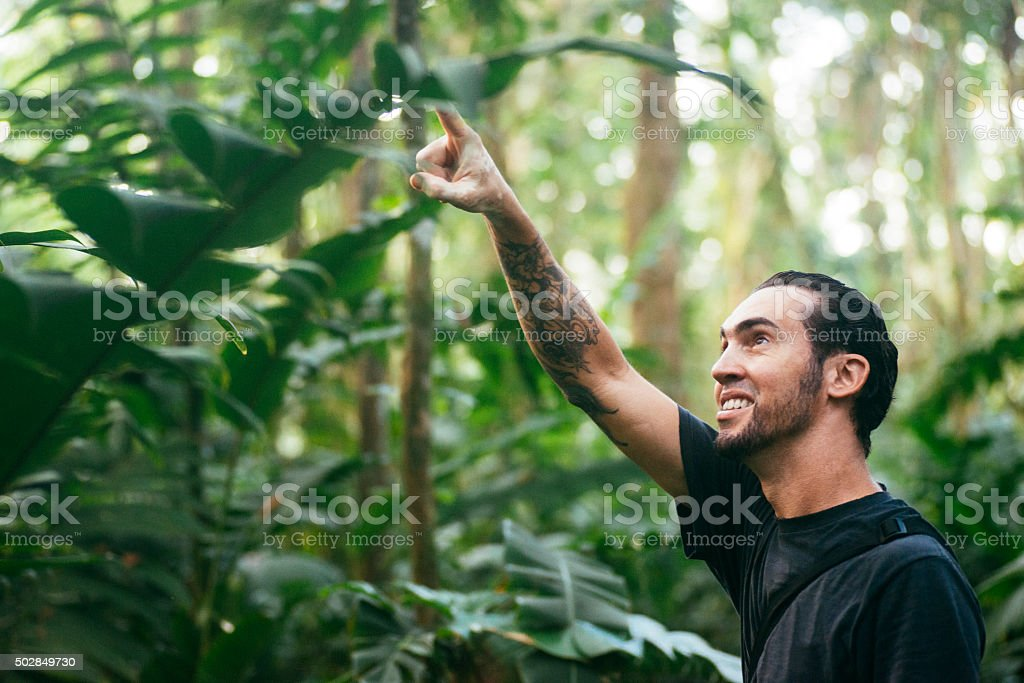 Cuban Man Points Up Trees in Costa Rica Rainforest Wetlands stock photo