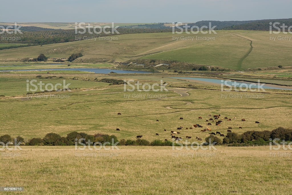 Cuckmere Haven in East Sussex, England stock photo