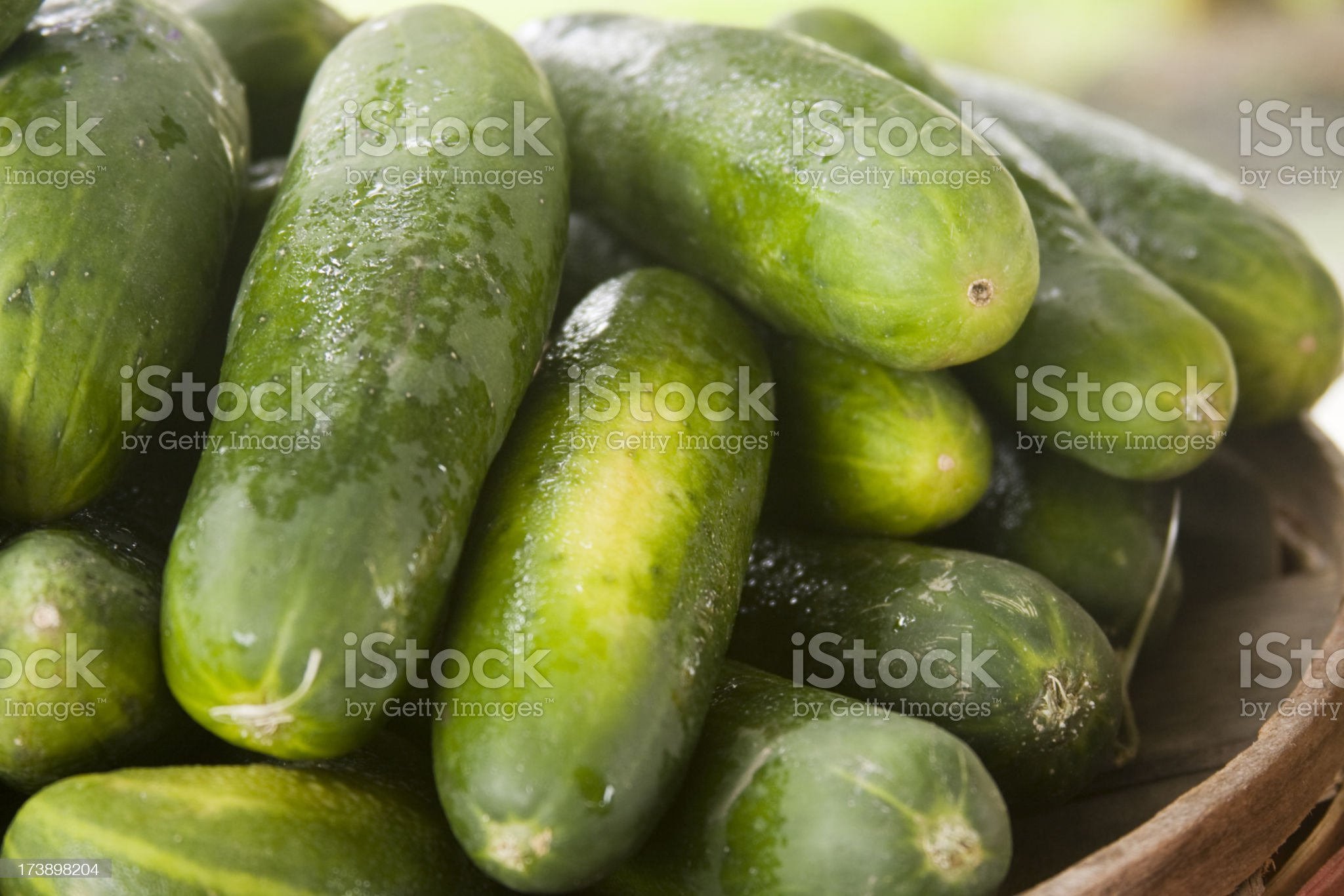 Cucmbers at the Farmers' Market royalty-free stock photo