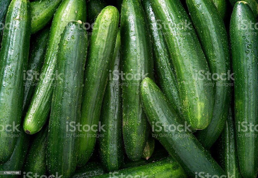 Cucumber background stock photo