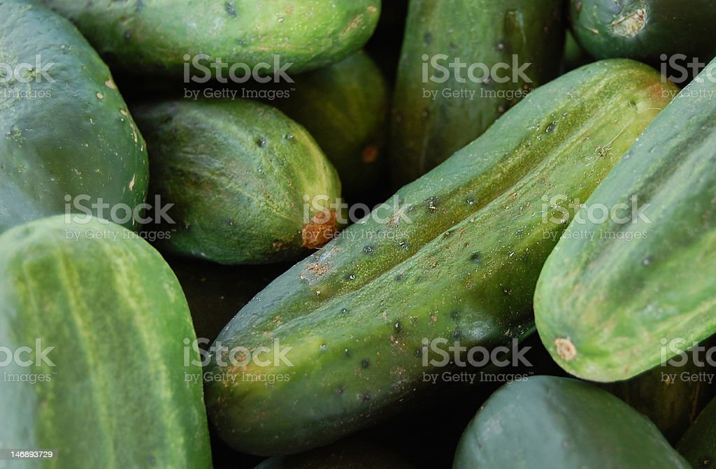 Cucumber farm stand stock photo