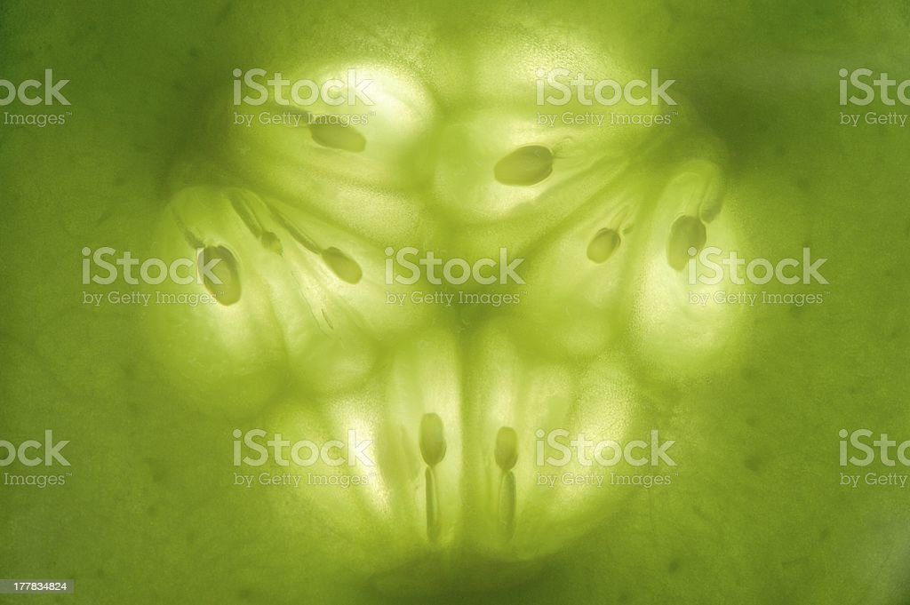 Cucumber Slice Macro royalty-free stock photo
